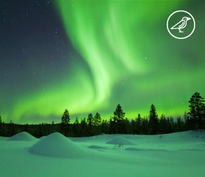 Paquete Capitales de las Auroras Boreales
